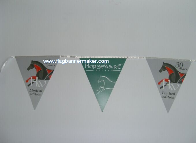 Party pennant streamer bunting