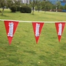 Custom pennant flags