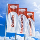Custom brand advertising flags
